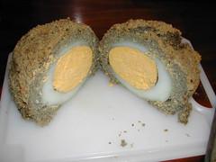 Egg in cross section