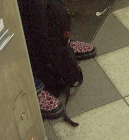 Pink Leopardskin
