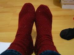 Socks for Josie