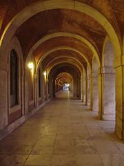 Arcos (el final del túnel)