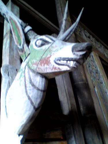 thaiku deer