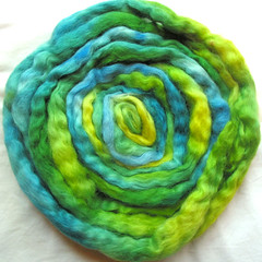 Winderwood Farms handdyed roving