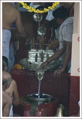 Abhishekam of Lord Venkataramanana