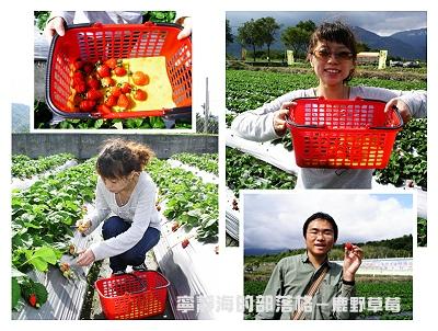 夏季感冬之旅_0118_鹿野草莓樂