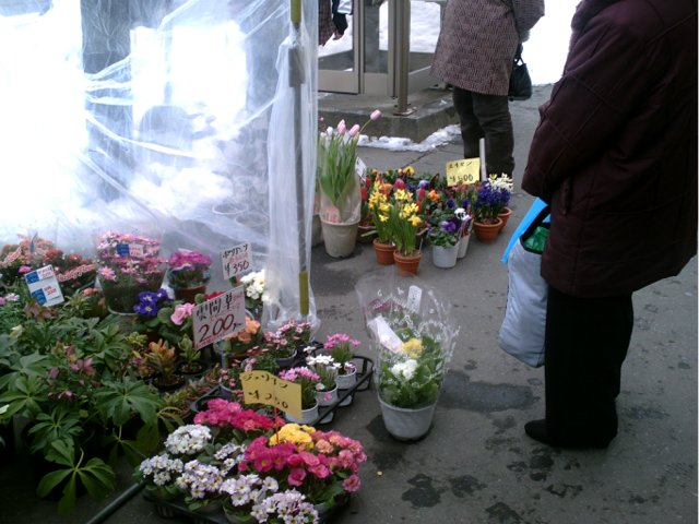 market day060215a