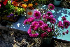 Ofrendas en Huaquechula dia de muertos