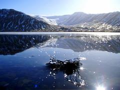 Reflection. photo by júlía ∆