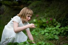 Heavenly gardens photo by Andri Elfarsson