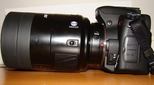 Minolta 500mm f8 birding 229