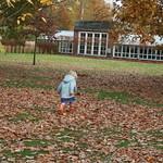 Running in the leaves<br/>09 Nov 2008
