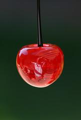 Cherry photo by philipbouchard