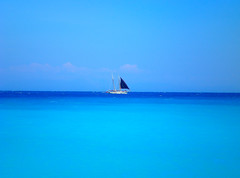 Total blue ... photo by pantherinia_hd Anna A.