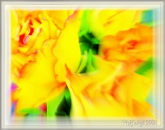 Ode to Spring............ photo by pinklady6... Home ..