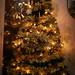 xmas_tree_DSC7563