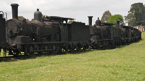 Dorrigo Steam and Railway Museum