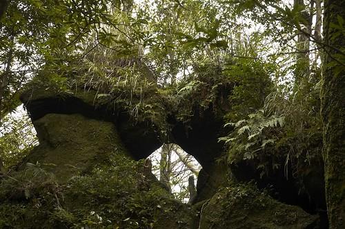 凱達格蘭遺跡孔龍石