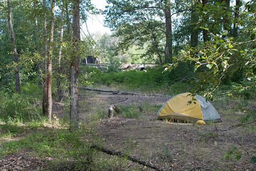 Camping near Cle Elum