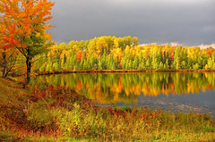 Autumn Splendor Landscape photo by Lifeinthenorthwoods.com