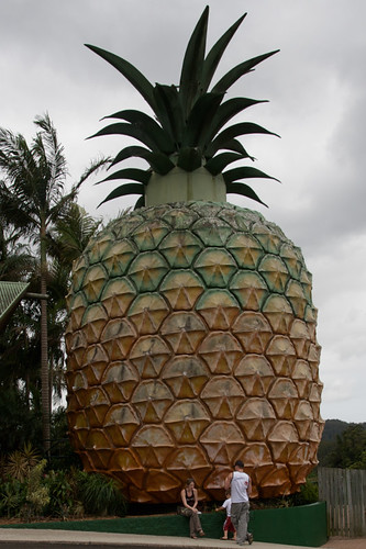 At the Big Pineapple
