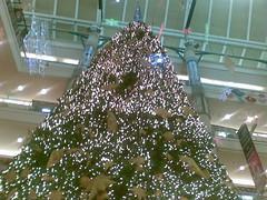 Giant XMas tree