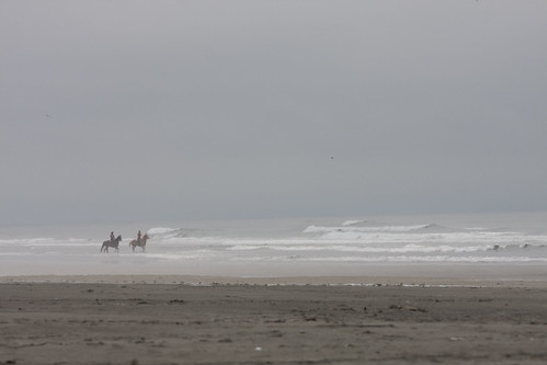 Horse riding along the edge of the Pacific
