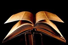 The Golden Book photo by Carlos Porto