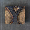 Wood Type Y