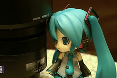 Miku and Carl Zeiss 85/1.4ZA (PICT0021) photo by Kelvin 相機下的世界