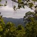 Guatemala & Belize-4554 © Bart Plessers