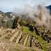 Peru-6522 © Bart Plessers