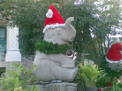 Elephant Santa