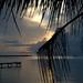 Guatemala & Belize-4774 © Bart Plessers