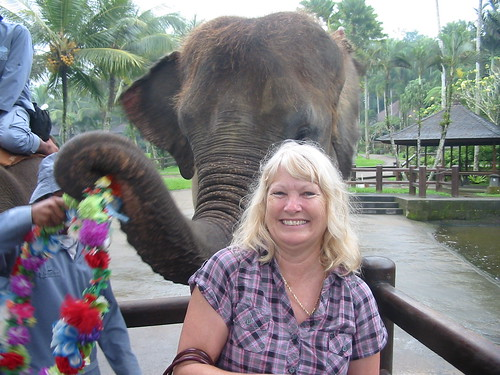 True Elephant lover: Mel Ridge