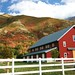 Red Barn in Front of Maple Mountain