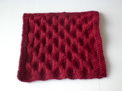 Smock Dishcloth - WS