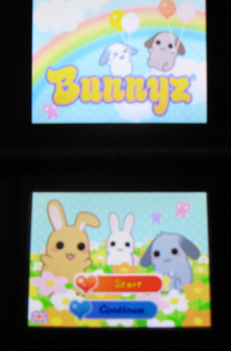 Review Bunnyz on Nintendo DSi