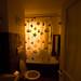 Light going down the toilet