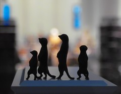 Meerkats at the Fourth Plinth photo by Swamibu