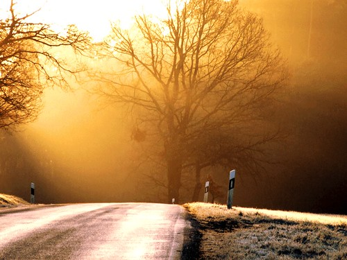 road to heaven golden version photo by ♦ Peter & Ute Grahlmann ♦
