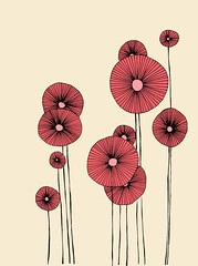 Poppy Flowers photo by Ula~