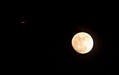 luna 002