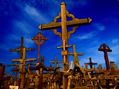 2008 Baltic Holiday Lithuania, Hill Of Crosses photo by Tony Shertila