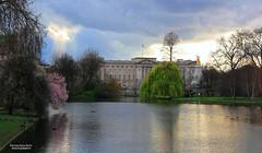 Magical light on Buckingham Palace photo by Patrizia Ilaria Sechi