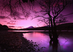 Dawn over Schiehallion photo by Paddy McDougall