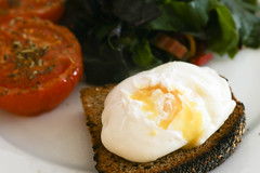 Poached Egg on Toasted No Knead Bread
