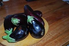 aubergines pour la riste