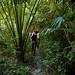 Guatemala & Belize-4609 © Bart Plessers