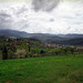 Carpathians near Yaremche