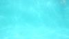 2895945880_4fc56f649a_t
