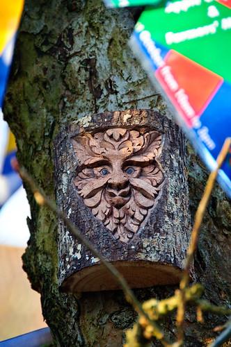 18/365 Tree face